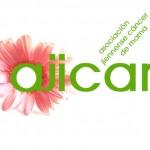 logotipo flor